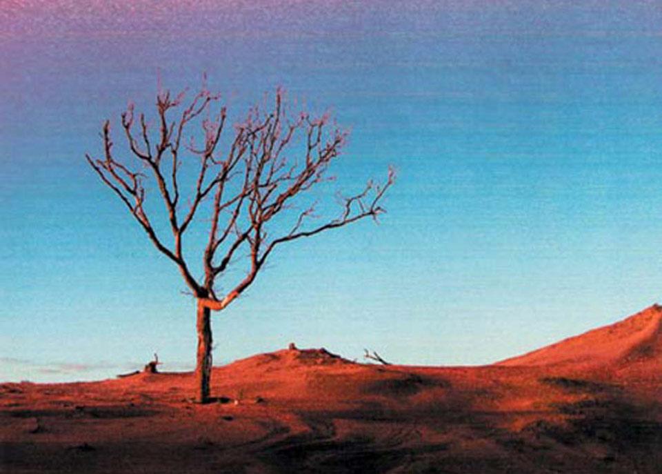 carte postale @ jp fonjallaz atelier poussière